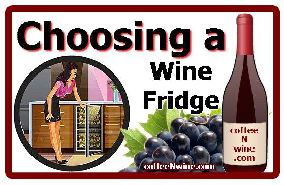 Choosing a Wine Fridge