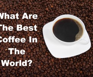 What is The Best Coffee In The World? Tips to Select the Best