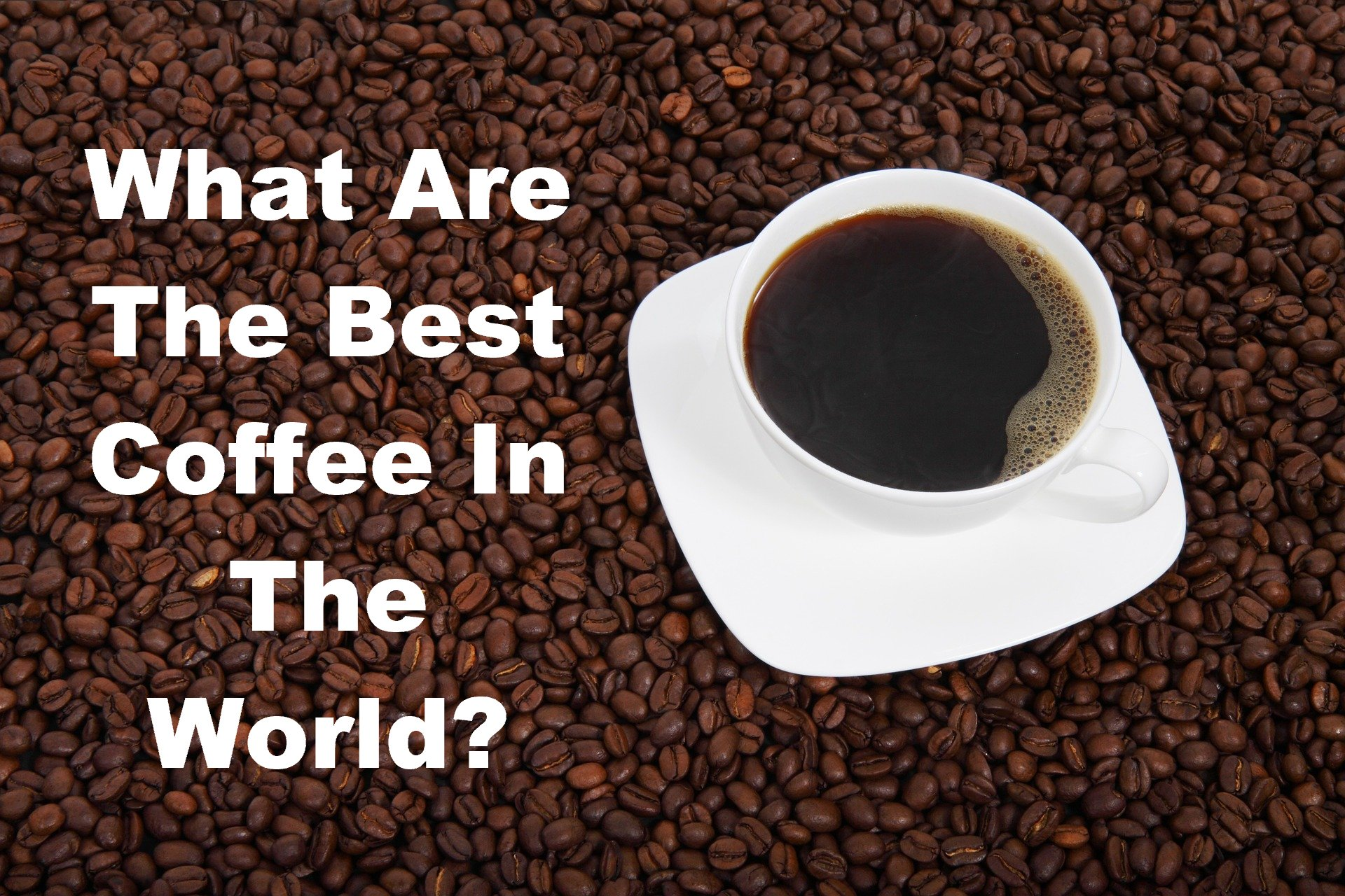 What Is The Best Coffee In World Tips To Select