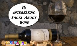10 Interesting Facts aboutWine That You May Not Know