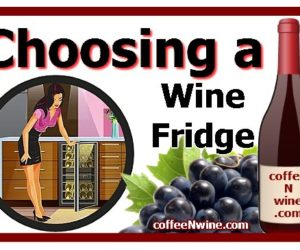 Choosing a Wine Fridge Tips