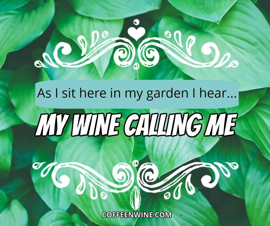 Tumblr-Wine-Quotes-Images-As-I-sit-in-my-garden-I-hear-my-wine-calling-me