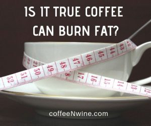 Can Coffee Burn Fat? New Study Says Coffee Can Help Burn Fat